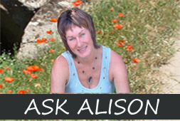 ask-alison1